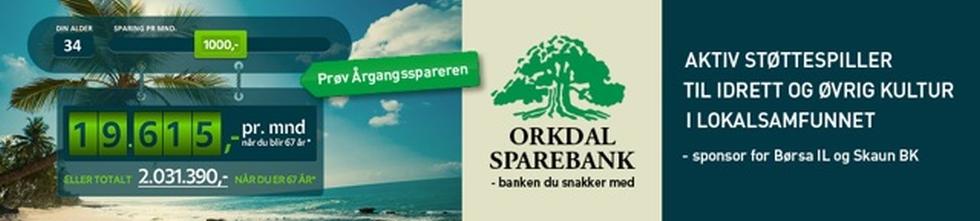 Orkdalsbanken 980x221 px_sept14-3